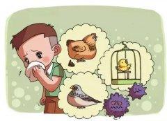 过敏性鼻炎为什么反复发作?这几类过敏原要避免!